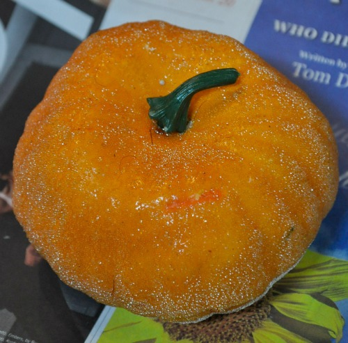 Pumpkin Topiary - The Endearing Home